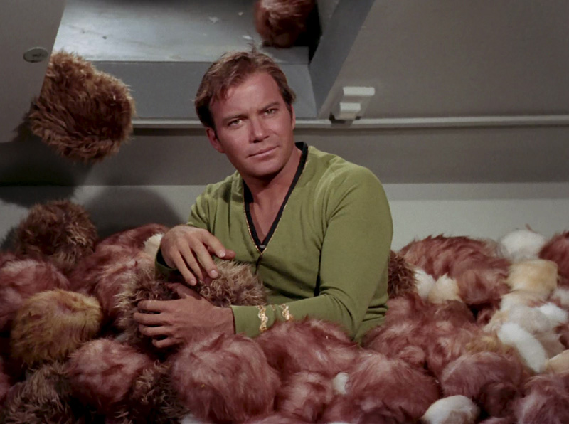 Species picture Tribbles