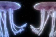 Episode image Space Jellyfish